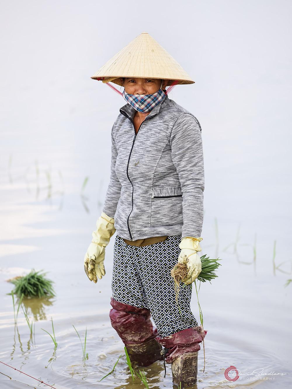 Ripple Hoi An Vietnam 2019