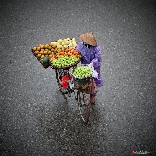 Fresh Bike