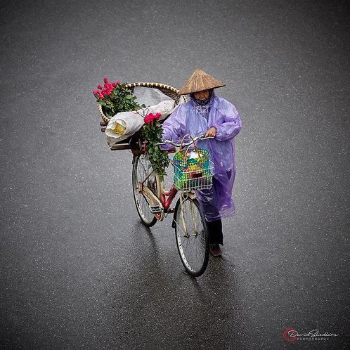 The Hanoi Bike Series I