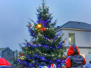 Opportunity to sponsor a Christmas tree in your community.