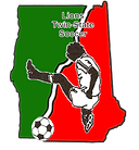 LIONS-CUP-LOGO-COLORED.png