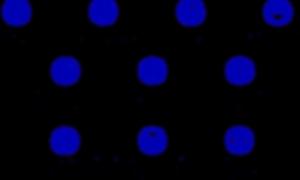 icones+todas+coberturas.png