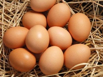 Full Egg Share