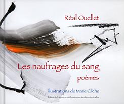 littérature, poésie, livre d'art québécois, illustration livre d'art, artiste peintre Marie Cliche, art contemporain abstrait, acheter en ligne,