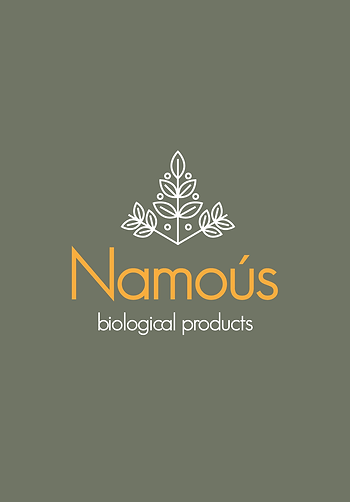 logo-presentation-Namous-2.png