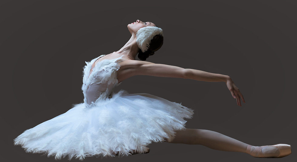 Dying swan 2.jpg