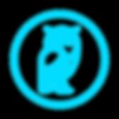 owlconic logo.png