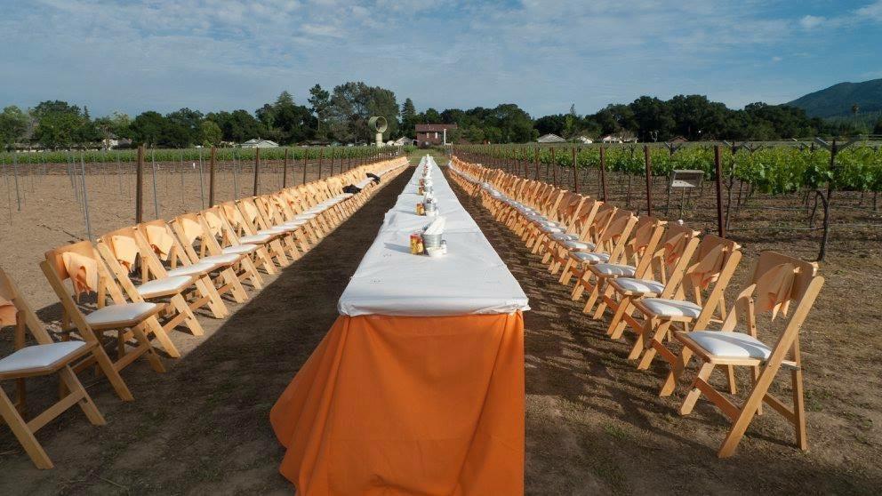 Salvestrin Winery, Napa, CA