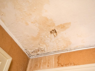 Pregnant Woman In Battle With Council About Damp Flat