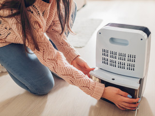 Best Dehumidifiers Tried And Tested