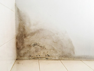 Top Tips For Identifying And Controlling Damp