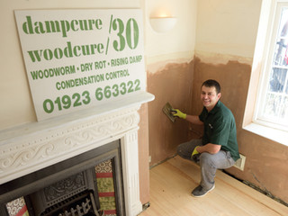 How Can You Damp Proof Your Walls?