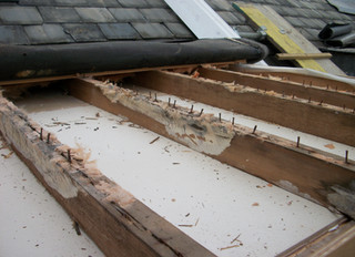 Inspecting Roof 'Essential' Before Solar Installation