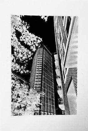 Canada Water Buildings Screen Print