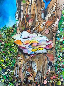 Peach Tree & Chicken of the Woods