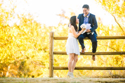 Engagement-JonWendy-FG-TT-6