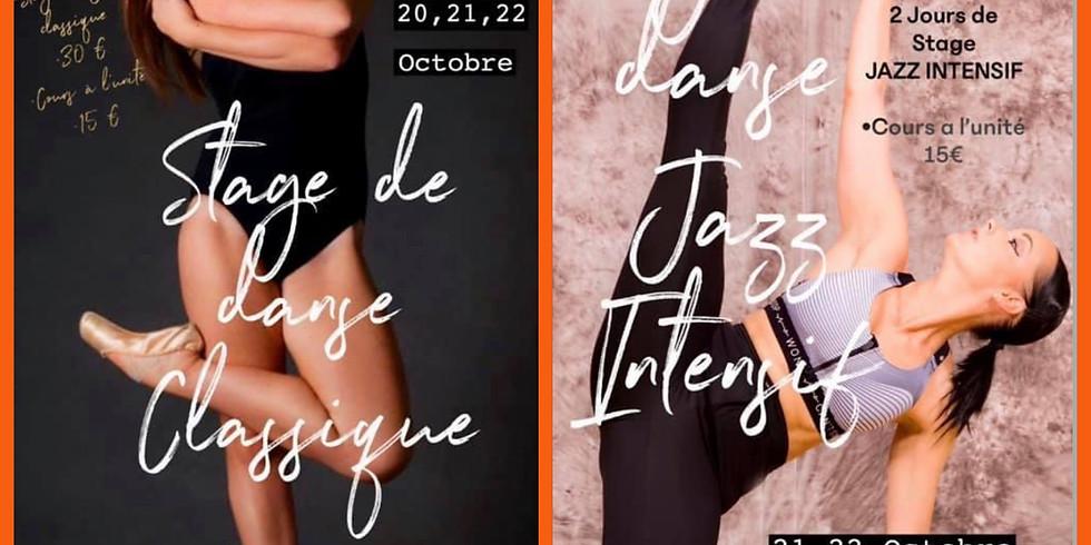 STAGE VACANCES DE LA TOUSSAINT 20,21,22 OCTOBRE 2020