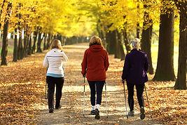 Three women in the park - Nordic walk.jp