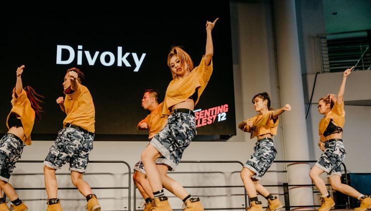 Divoky-5.jpg