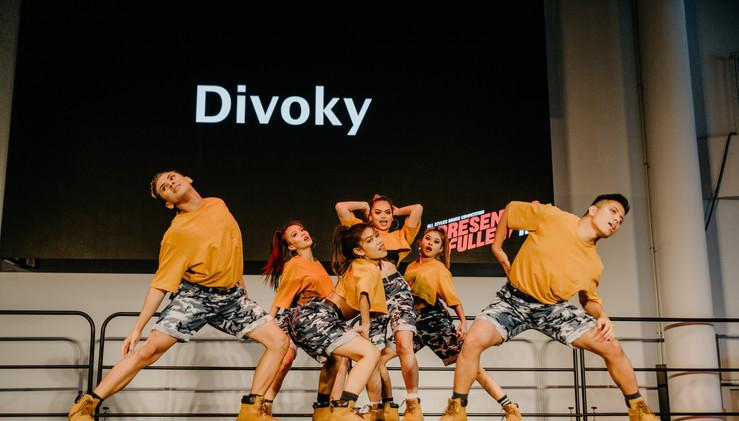 Divoky-14.jpg