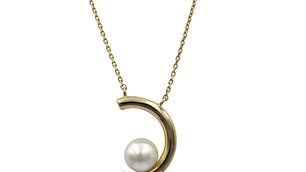 SGN07 Moon Dal 925 Silver Necklace