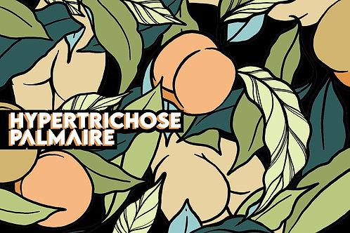 HYPERTRICHOSE PALMAIRE (33CL)