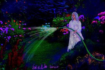 Night Garden Low.jpg