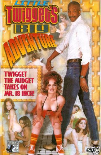 Little Twigget's Big Adventure