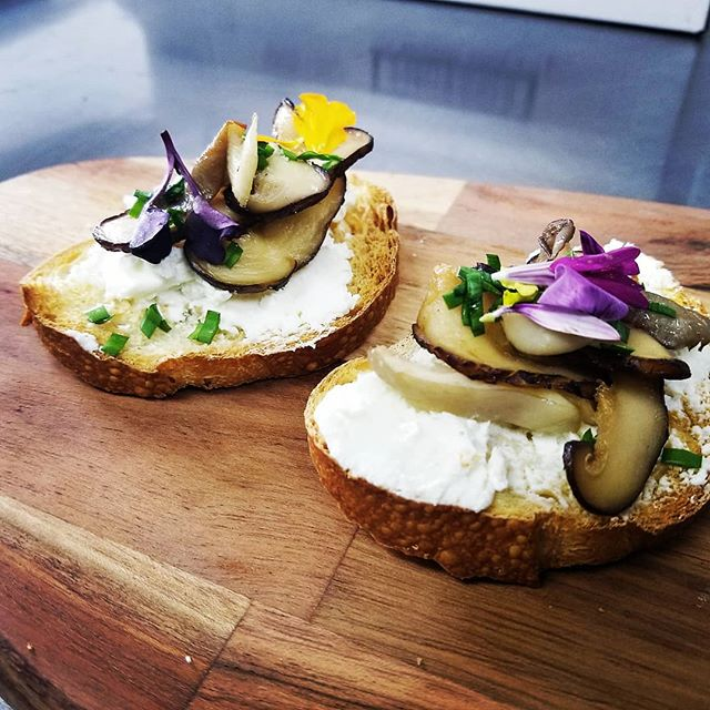Wild Mushroom and Goat Cheese Crostini