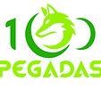 Logo 100Pegadas Fundo Branco 2017.jpg