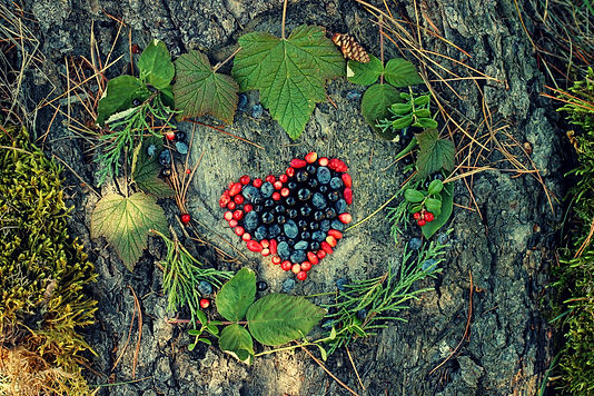 A variety of wild berries in the shape o