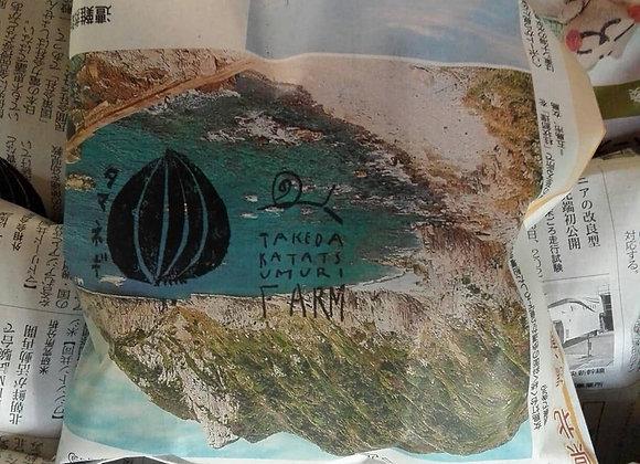 エコ新聞袋  10枚