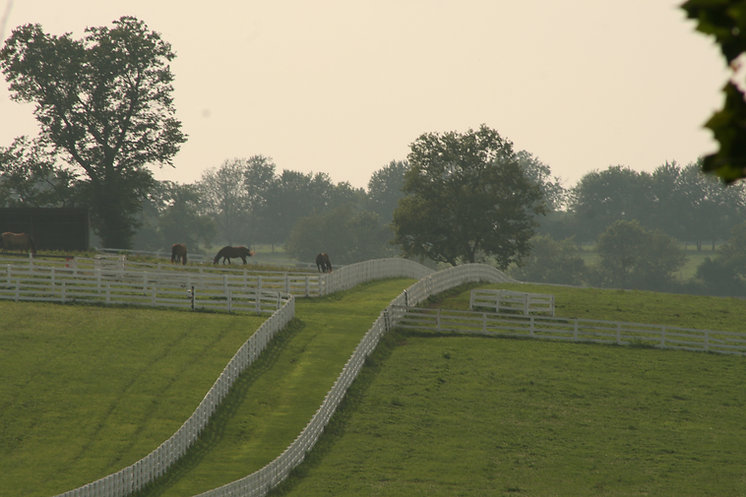 Kentucky Horse Park minutes from Charred Oaks Inn Bed & Breakfast