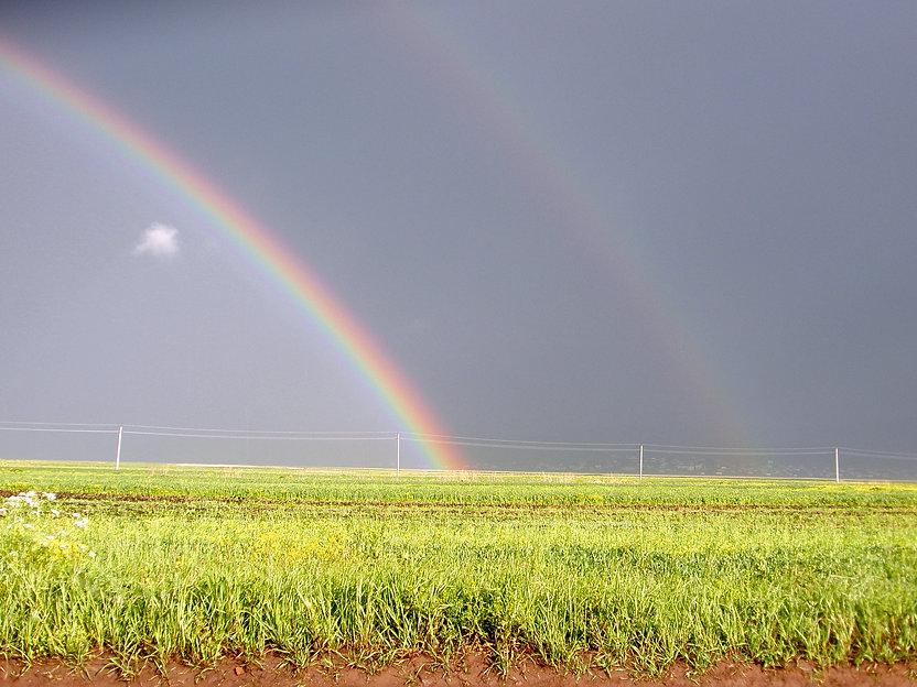 Georgia enhanced rainbow.jpg