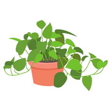 plant-potted.png