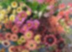 IMG_1196%20(1)_edited.jpg