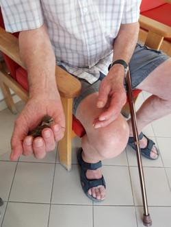 An elderly man holding a bird in his hand