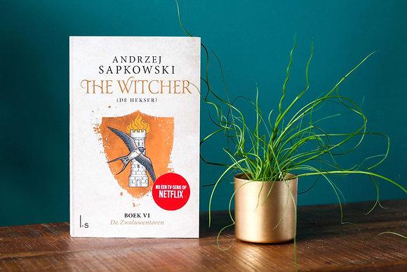 Andrzej Sapkowski - The Witcher Boek 6 - De zwaluwentoren