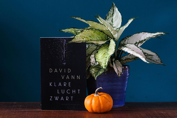 David Vann - Klare lucht zwart