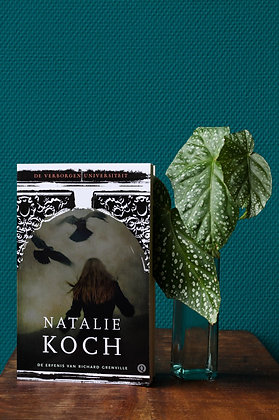 Natalie Koch -  De erfenis van Richard Grenville