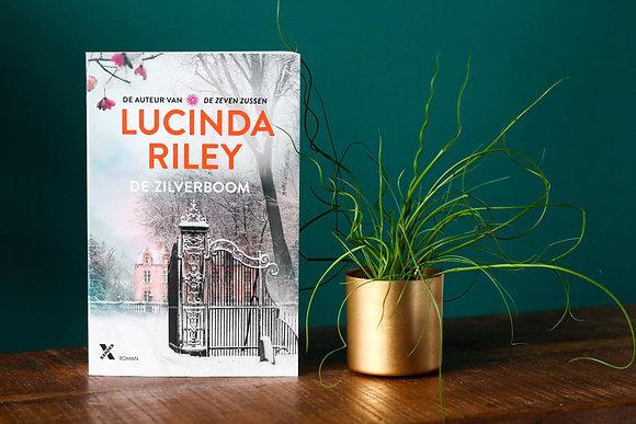 Lucinda Riley - De zilverboom