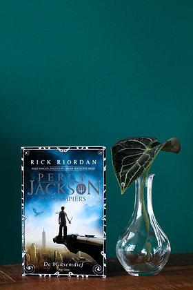 Rick Riordan - De Bliksemdief