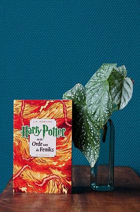 J. K. Rowling - Harry Potter en de Orde van de Feniks
