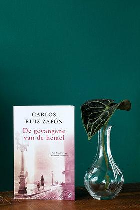 Carlos Ruiz Zafón - De gevangene van de hemel