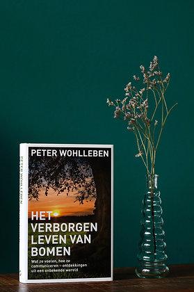 Peter Wohlleben - Het verborgen leven van bomen