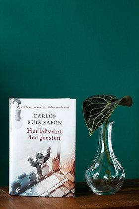 Carlos Ruiz Zafón - Het labyrint der geesten