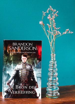 Brandon Sandersen -  De bron der verheffing