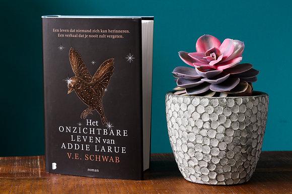 V.E Schwab - Het onzichtbare leven van Addie LaRue