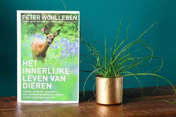 Peter Wohlleben - Het innerlijke leven van dieren