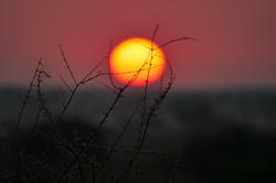 Namibian purple Sunset